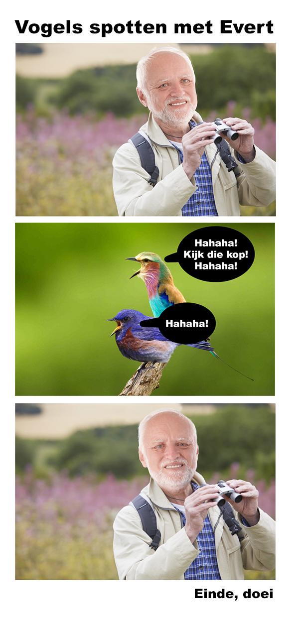 Default vogel
