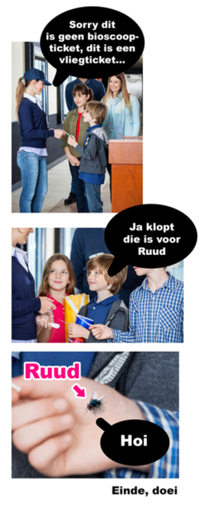 Small ruud